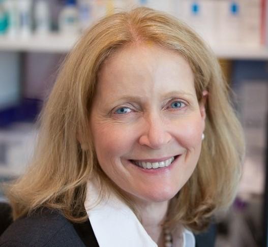 Dr Jill Cargnello