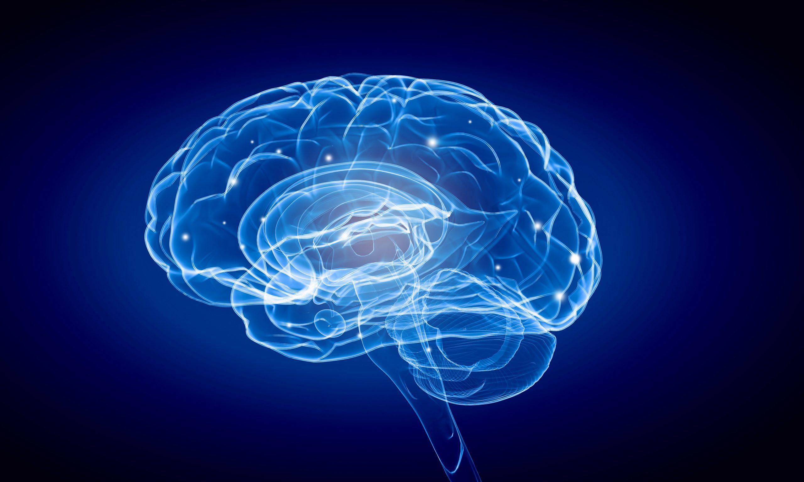 Coronavirus and the brain: Diagnosing and treating COVID-19's neurological effects